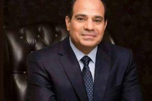 الرئيس المصري يدعو المواطنين للتكاتف للنهوض بالإقتصاد في البلاد