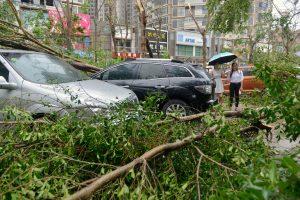 بعد إعصار ميرانتي : إعصار يضرب تايوان وجزر الأرخبيل الياباني الجنوبي