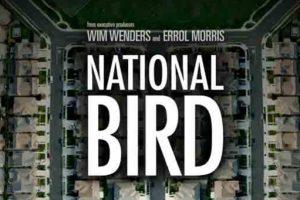 """فيلم """"ناشونال بيرد"""" الوثائقي يكشف حقيقة الطائرات الأمريكية بدون طيار"""