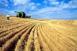 لأول مرة صادرات روسيا الزراعية تتفوق على صادرات الأسلحة