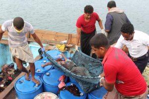 التحالف العربي يطالب بإشراف أممي على ميناء الحديدة اليمني عقب الهجوم على سفينة لاجئين