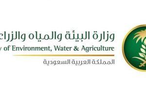 وظائف وزارة البيئة والمياه والزراعة 1438 رابط التقديم في وظائف وكالة الثروة الحيوانية في السعودية