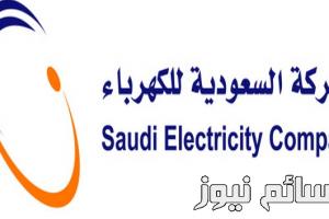 تحذيران من لجنة الإقتصاد والطاقة بمجلس الشورى وهيئة الكهرباء ترد بالأرقام
