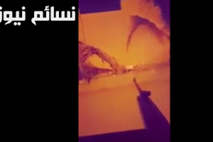 سفاح القطط ينتظر إلقاء القبض عليه بعد توجيهات من الأمير خالد الفيصل وتأكيدات على الإلتزام بحقوق الحيوان