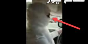 فتاة مثلمة تقود سيارة
