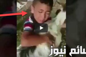 بالفيديو .. شاهد ردة فعل طفل صغير لحظة ذبح تيس في عيد الأضحى المبارك