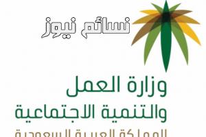 بشرى لرواد ورائدات العمل الحر في المملكة العربية السعودية .. إصدار وثائق وترخيص بمزاولة الأنشطة ضمن برنامج العمل الحر