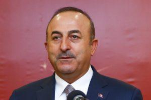 وزير الخارجية التركي يشدد على وجوب إيجاد حل سياسي للصراع السوري لتحقيق الاستقرار