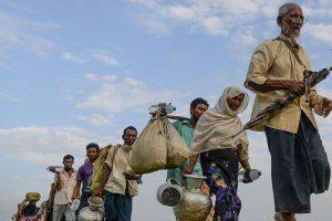 استمرار فرار أقلية الروهينجا المسلمة من ميانمار إلى بنجلاديش على الرغم من اتفاق إعادة اللاجئين