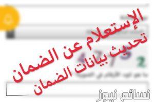 الاستعلام عن الضمان الاجتماعي برقم الهويه او الضمان او بالسجل المدني | استعلام رصيد المقطوعة في الضمان الاجتماعي السعودي