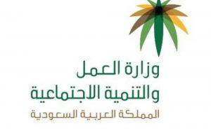 وزارة العمل والتنمية الاجتماعية السعودية تبدأ تطبيق سعودة المهن في منافذ تأجير السيارات