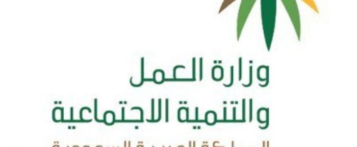 نجران تشهد حملات تفتيشية على منافذ تأجير السيارات للتأكد من تطبيق قرار التوطين