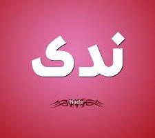 معنى اسم ندى في اللغة العربية