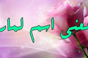 معنى اسم لمار في اللغة العربية