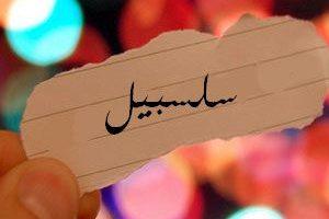 معنى اسم سلسبيل فى المعجم العربي
