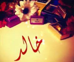 معنى اسم خالد داخل قاموس المعاني