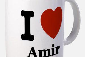 معنى اسم عامر داخل قاموس المعاني
