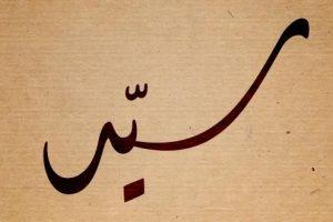 معنى اسم سيد في اللغة العربية