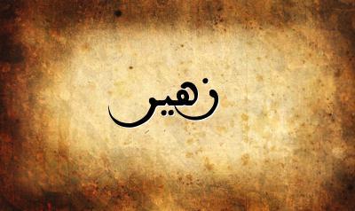 معنى اسم زهير في اللغة العربية