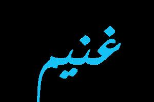 معنى اسم غنيم في اللغة العربية