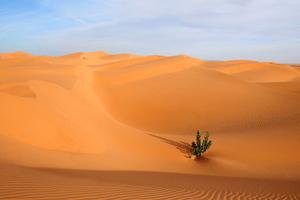 تفسير حلم رؤية الجلوس على الرمال