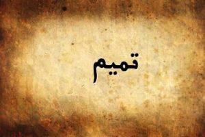 معنى اسم تميم في اللغة العربية