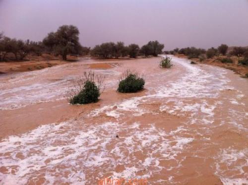 تفسير حلم رؤية السيول في المنام