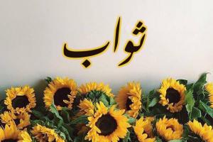 معنى اسم ثواب في اللغة العربية