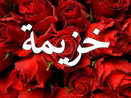معنى اسم خزيمة في اللغة العربية