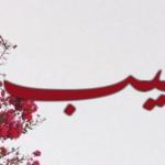 معنى اسم خبيب في اللغة العربية
