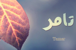 معنى اسم تامر في اللغة العربية