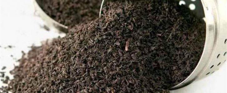 الشاي الأسود في الروتين اليومي وفوائده وأضراره