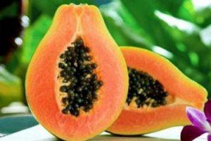 فوائد وأضرار فاكهة البابايا للحامل