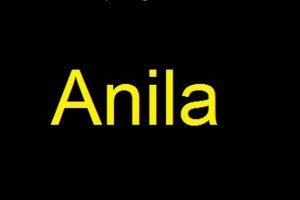 معنى اسم أنيلا في علم النفس وأصله