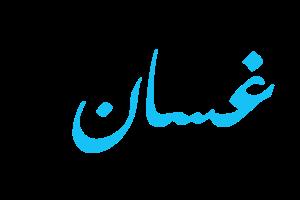 معنى اسم غسان وحكم تسميته