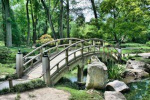 تفسير رؤية حلم البستان في المنام