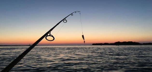 تفسير رؤية الصيد في المنام للنابلسي