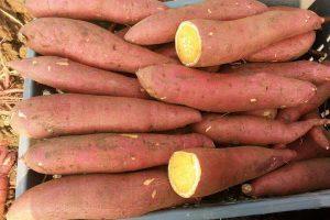 تفسير حلم البطاطا في المنام لابن سيرين