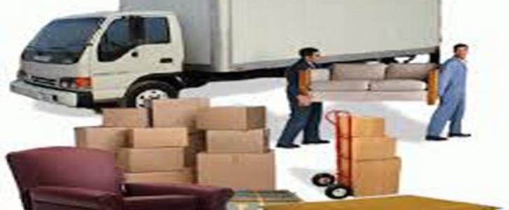مؤسسة نقل المدينة المنورة تعلن عن توافر وظيفة شاغرة لحملة الدبلوم