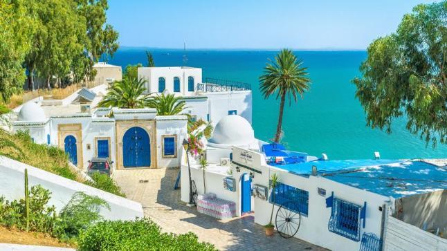 تداعيات كورونا .. انخفاض أعداد السائحين في تونس بنسبة 80%