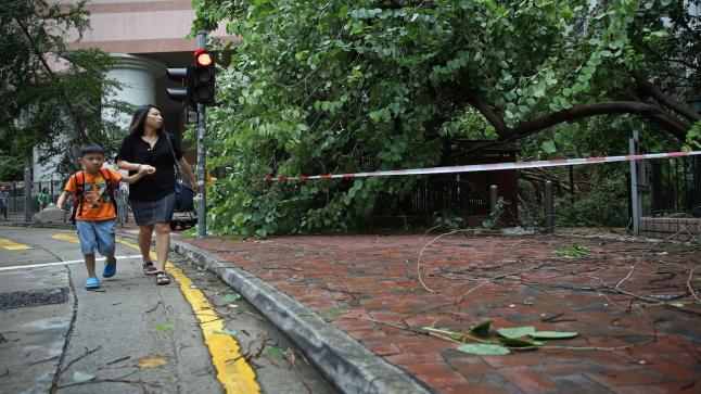 """السلطات الصينية تطلق التحذير الأصفر بسبب الإعصار المداري """" نيدا """""""