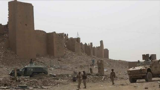 وكالة الأنباء الإماراتية تبث مقطع فيديو لقيادي حوثي يعلن خلاله دعمه لقوات الشرعية