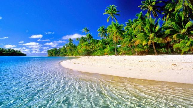 أفضل الأوقات في العام لزيارة جزر المالديف
